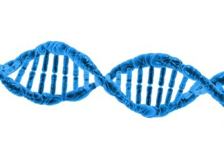 Bioquímica, DNA, proteínas