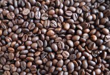 Raízes do café, história, cafeicultores