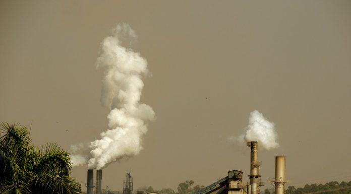 ECO-92, ambiente, convenção